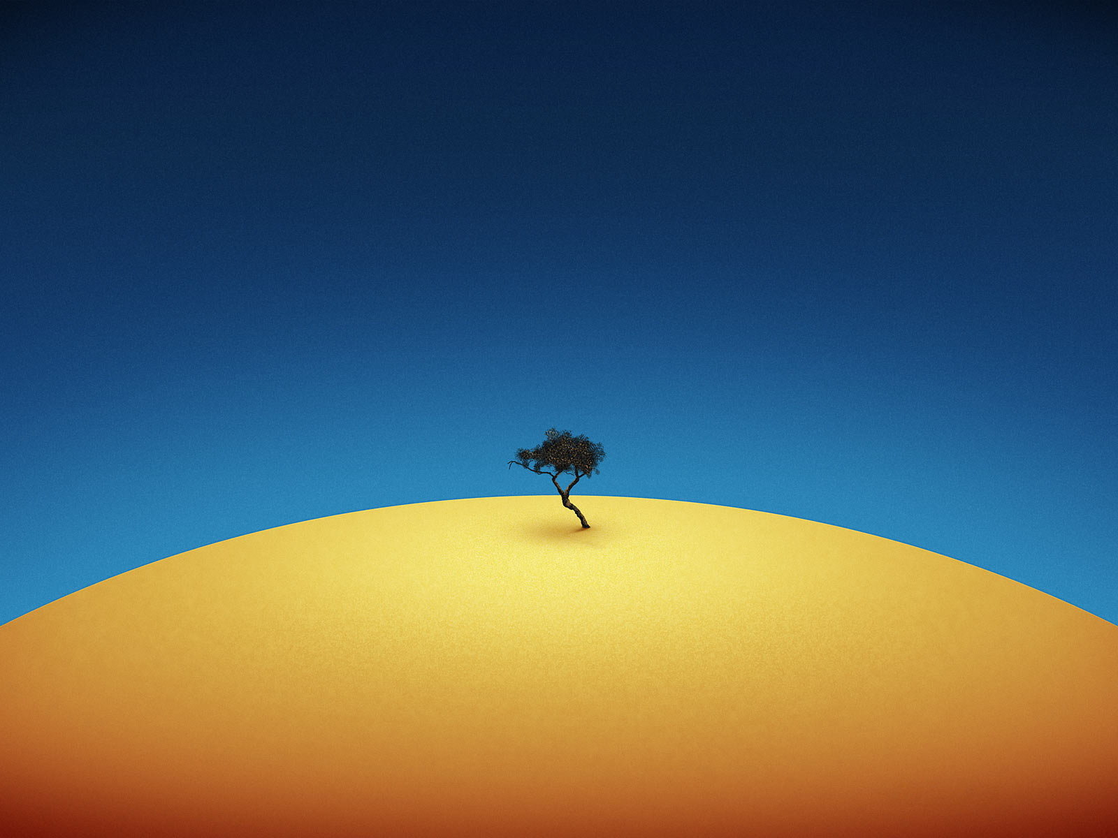 Pics-of-Nature-Landscape-an-Isolated-Tree-Among-Yellow-Desert-the-Blue-Sky