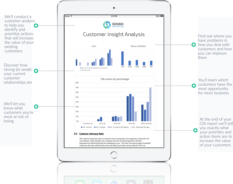 Customer analysis in marketing