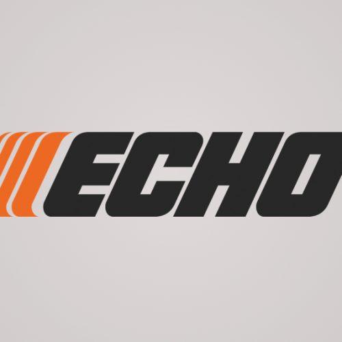 echo case study